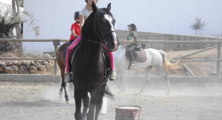 Lessons at English Horse Camp - Cortijo Las Minas