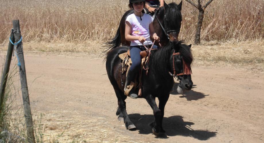 Paseos en poney - Cortijo Las Minas