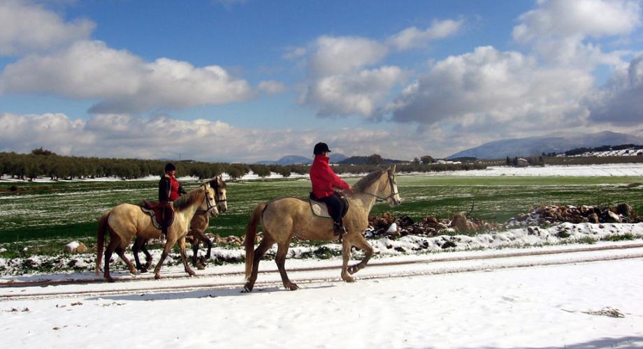 Rutas a Caballo por Paisajes Nevados - Cortijo Las Minas