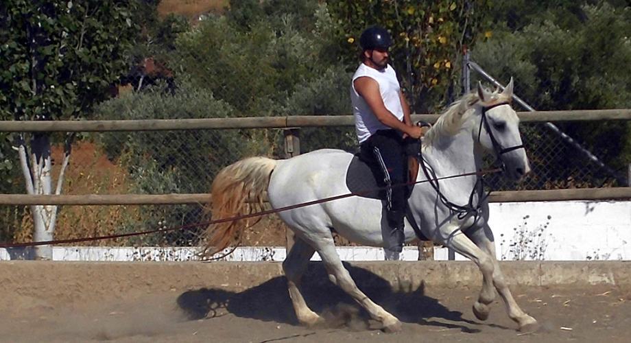Cursos de Equitación - Cortijo Las Minas